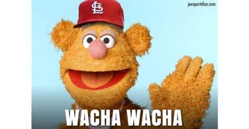 wachafozzy
